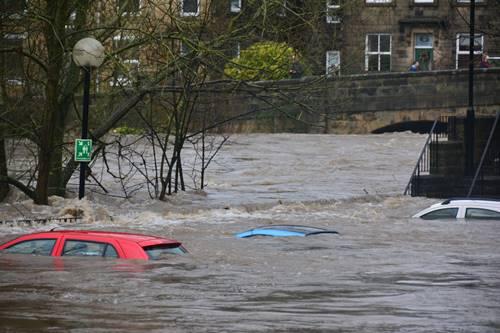 banjir dapat disebabkan perubahan iklim 5 Tanda Kepunahan Massal Keenam