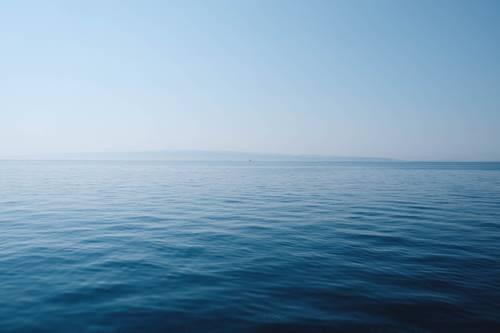 tingkat keasaman laut meningkat 5 Tanda Kepunahan Massal Keenam