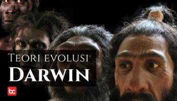 Teori Evolusi Darwin Yang Mencengangkan Dunia