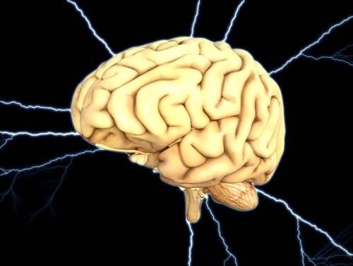 otak manusia yang sedang bekerja
