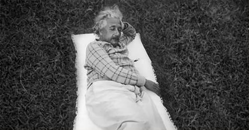 Albert Einstein sedang berpose tidur di alam terbuka