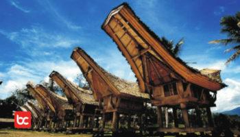 Toraja Bukan Hanya Kerbau Ada Budaya Apa lagi?