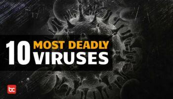 10 Virus Mematikan yang Ada di Bumi