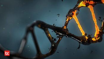 5 Mitos Sains yang Masih Sering Dipercaya Hingga Sekarang