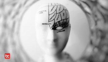 Adakah Hubungan Ukuran Otak dengan Kecerdasan Manusia?