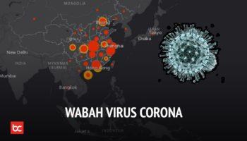 Apa Itu Virus Corona? (Penjelasan dan Pencegahan)
