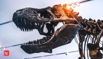 Bagaimana Jika Dinosaurus Masih Hidup di Zaman Sekarang?
