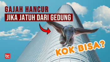 Kenapa Gajah Hancur Jika Jatuh Dari Gedung Tinggi?