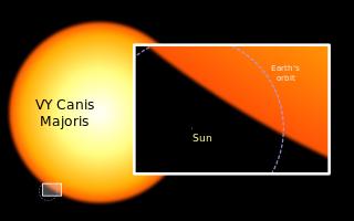 Matahari dan VY Canis Majoris.