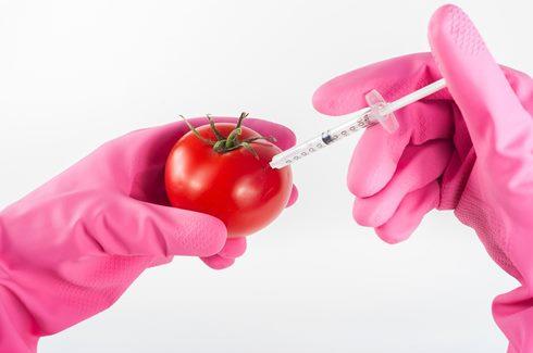 Modifikasi produk pangan