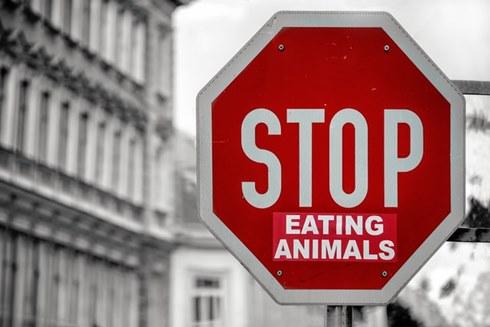 Inilah yang Terjadi Jika Semua Orang Jadi Vegetarian