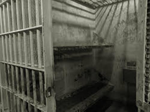 William james sidis harus dipenjara karena masalah demo