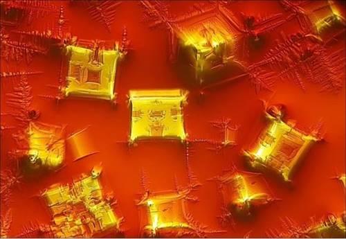 seperti bongkahan emas padahal hanya tetesan kecap di bawah mikroskop