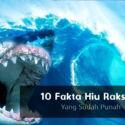 Megalodon! 10 Fakta Hiu Raksasa  Yang Sudah Lama Punah