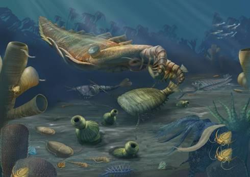 Ilustrasi sekumpulan fosil Zaman Kambrium