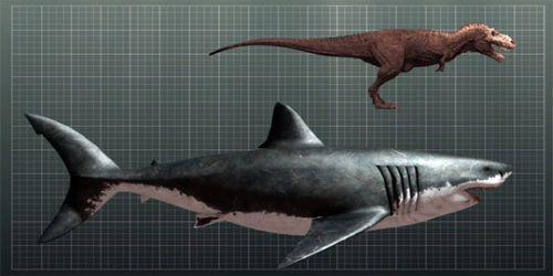 Megalodon vs Dinosaurus