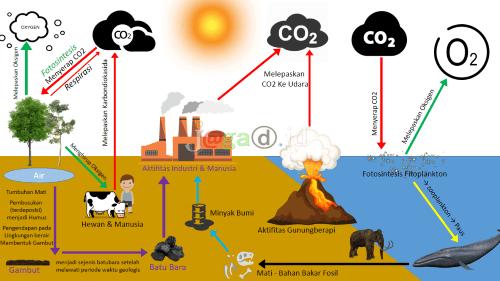 Siklus Karbon -Lautan Bertuka Tempat Dengan Daratan