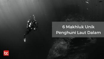 6 Makhluk Unik Penghuni Laut Dalam