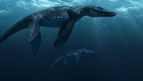 Liopleurodon. Sumber : listverse wpengine