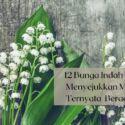 12 Bunga Indah dan Cantik ini Ternyata Beracun!