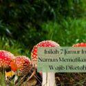 Inilah 7 Jamur Indah Namun Mematikan yang Wajib Diketahui!