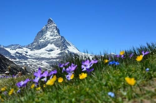 5 Negara Ini Aman Jika Perang Dunia III Terjadi- Pegunungan alphen di Swiss tampak damai cocok untuk berlindung saat perang
