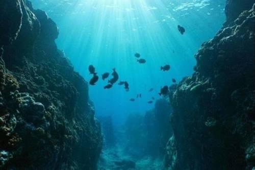 palung diamantina salah satu palung di samudra hindia