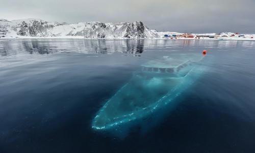 7 Hal Teraneh yang Pernah Ditemukan di Benua Antartika
