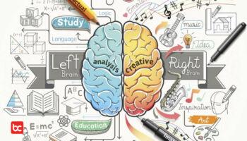 12 Fakta Menakjubkan Otak Manusia!