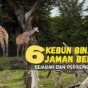 6 Kebun Binatang Jaman Belanda, Sejarah Dan Perkembangannya
