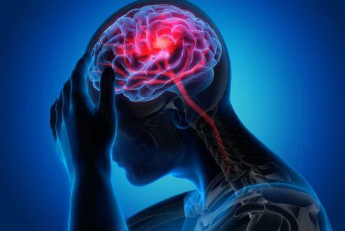 Otak Saat Mengalami Stres - Fakta Menakjubkan Otak Manusia