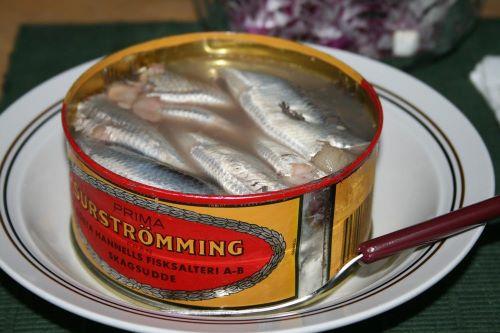 Surströmming Makanan Teraneh di Dunia