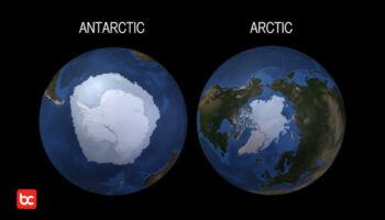 Antara Kutub Utara dan Kutub Selatan, Ternyata Ada 12 Perbedaannya Loh!
