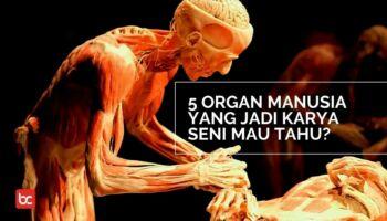 5 Organ Manusia yang Jadi Karya Seni Mau Tahu?