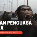 12 Hewan Yang Dapat Menguasai Bumi Jika Manusia Punah! Prediksinya Berdasarkan Sains!