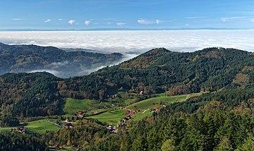 Black Forest, Hutan yang Mengerikan di  Jerman
