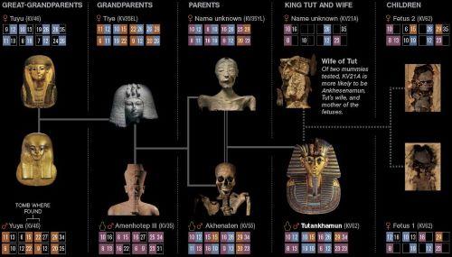 Pohon Keluarga Tutankhamun