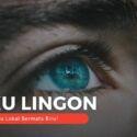 Suku Linggon, Suku Lokal Bermata Biru!