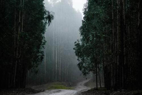 Pemandangan Alam, Kehidupan Ke Luar Angkasa