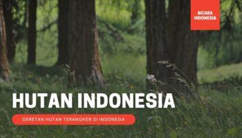 Inilah 5 Hutan Terangker Di Indonesia yang Kisahnya Tak Pernah Terpecahkan