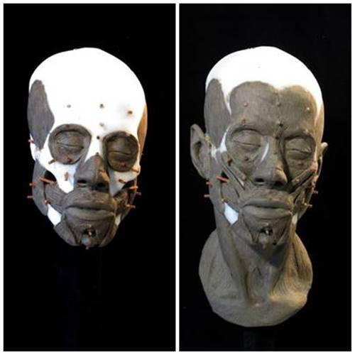 tulang tengkorak Avgi pada tahap kedua