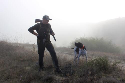 Berburu, Kehidupan Bumi Menjadi Zombie