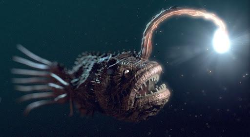 Ikan Sungut mengerikan
